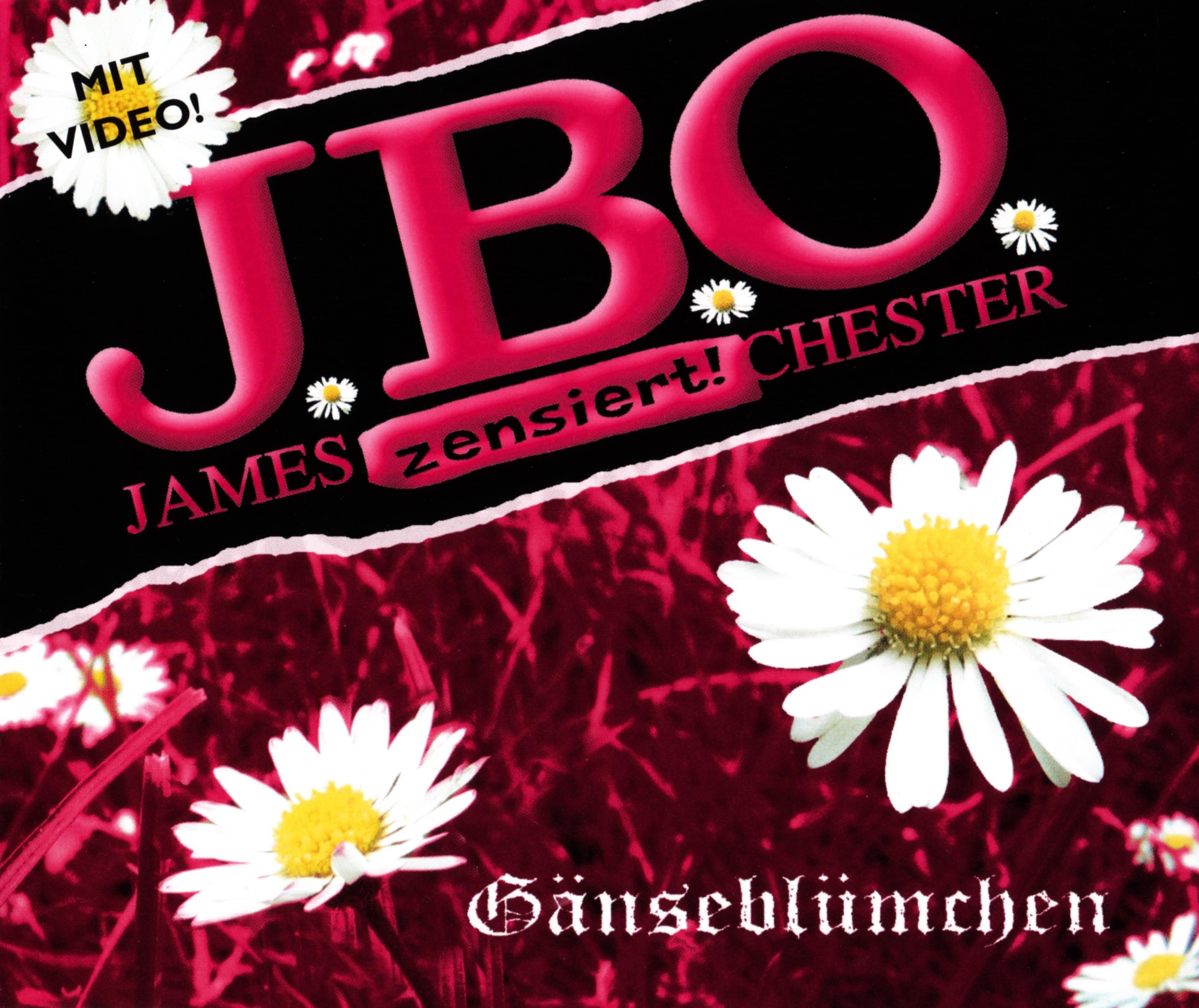 Valentinstagsgrüße & Gänseblümchen von J.B.O.