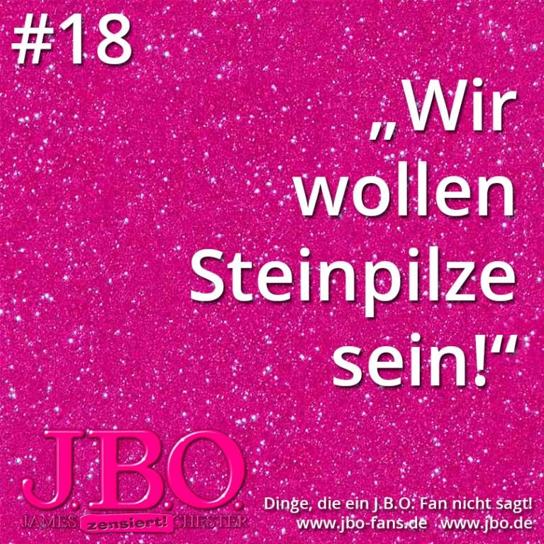 """Dinge, die ein J.B.O. Fan nicht sagt #18: """"Wir wollen Steinpilze sein!"""""""